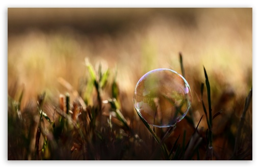 Soap Bubble On Grass ❤ 4K UHD Wallpaper for Wide 16:10 5:3 Widescreen WHXGA WQXGA WUXGA WXGA WGA ; 4K UHD 16:9 Ultra High Definition 2160p 1440p 1080p 900p 720p ; Standard 4:3 5:4 3:2 Fullscreen UXGA XGA SVGA QSXGA SXGA DVGA HVGA HQVGA ( Apple PowerBook G4 iPhone 4 3G 3GS iPod Touch ) ; Tablet 1:1 ; iPad 1/2/Mini ; Mobile 4:3 5:3 3:2 16:9 5:4 - UXGA XGA SVGA WGA DVGA HVGA HQVGA ( Apple PowerBook G4 iPhone 4 3G 3GS iPod Touch ) 2160p 1440p 1080p 900p 720p QSXGA SXGA ; Dual 16:10 5:3 16:9 4:3 5:4 WHXGA WQXGA WUXGA WXGA WGA 2160p 1440p 1080p 900p 720p UXGA XGA SVGA QSXGA SXGA ;