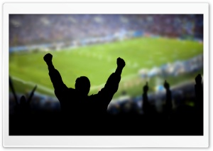Soccer Fans HD Wide Wallpaper for Widescreen