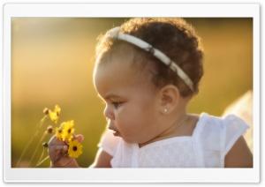 Soft HD Wide Wallpaper for Widescreen