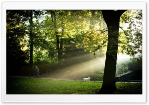 Sonnenborgh Park, Utrecht HD Wide Wallpaper for Widescreen