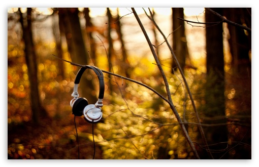 Sony Headphones HD wallpaper for Wide 16:10 5:3 Widescreen WHXGA WQXGA WUXGA WXGA WGA ; HD 16:9 High Definition WQHD QWXGA 1080p 900p 720p QHD nHD ; Standard 4:3 5:4 3:2 Fullscreen UXGA XGA SVGA QSXGA SXGA DVGA HVGA HQVGA devices ( Apple PowerBook G4 iPhone 4 3G 3GS iPod Touch ) ; Tablet 1:1 ; iPad 1/2/Mini ; Mobile 4:3 5:3 3:2 16:9 5:4 - UXGA XGA SVGA WGA DVGA HVGA HQVGA devices ( Apple PowerBook G4 iPhone 4 3G 3GS iPod Touch ) WQHD QWXGA 1080p 900p 720p QHD nHD QSXGA SXGA ; Dual 16:10 5:3 16:9 4:3 5:4 WHXGA WQXGA WUXGA WXGA WGA WQHD QWXGA 1080p 900p 720p QHD nHD UXGA XGA SVGA QSXGA SXGA ;