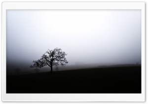South Downs Fog, England HD Wide Wallpaper for Widescreen