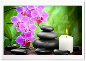 Spa, Candle, Orchid Flowers HD Wide Wallpaper for 4K UHD Widescreen desktop & smartphone