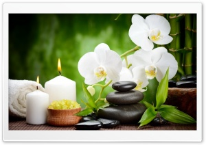 Spa, Candles, Flowers HD Wide Wallpaper for Widescreen