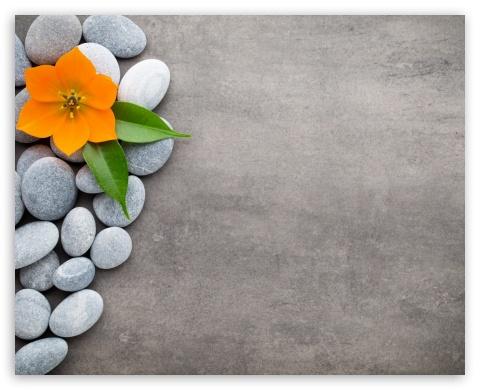 Spa wallpaper  Spa Zen Stones Flower Orchid ❤ 4K HD Desktop Wallpaper for