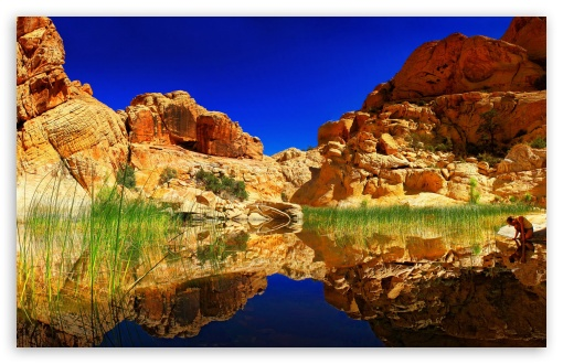 Spectacular Lake Reflection HD wallpaper for Wide 16:10 5:3 Widescreen WHXGA WQXGA WUXGA WXGA WGA ; HD 16:9 High Definition WQHD QWXGA 1080p 900p 720p QHD nHD ; Standard 4:3 5:4 3:2 Fullscreen UXGA XGA SVGA QSXGA SXGA DVGA HVGA HQVGA devices ( Apple PowerBook G4 iPhone 4 3G 3GS iPod Touch ) ; Tablet 1:1 ; iPad 1/2/Mini ; Mobile 4:3 5:3 3:2 16:9 5:4 - UXGA XGA SVGA WGA DVGA HVGA HQVGA devices ( Apple PowerBook G4 iPhone 4 3G 3GS iPod Touch ) WQHD QWXGA 1080p 900p 720p QHD nHD QSXGA SXGA ;