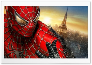 Spider Man 2012 HD Wide Wallpaper for Widescreen
