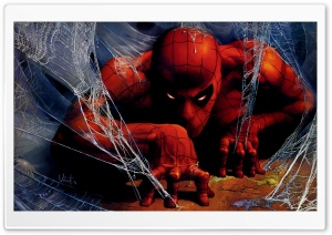 Spider Man Illustration HD Wide Wallpaper for Widescreen