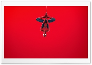 Spider Man (Red Background) HD Wide Wallpaper for Widescreen