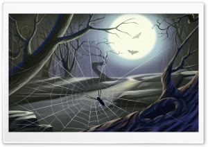 Spider Web Full Moon Hallowmas Halloween HD Wide Wallpaper for 4K UHD Widescreen desktop & smartphone