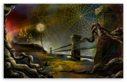 Spider Web Hallowmas Halloween HD wallpaper for Wide 16:10 5:3 Widescreen WHXGA WQXGA WUXGA WXGA WGA ; HD 16:9 High Definition WQHD QWXGA 1080p 900p 720p QHD nHD ; Standard 4:3 5:4 3:2 Fullscreen UXGA XGA SVGA QSXGA SXGA DVGA HVGA HQVGA devices ( Apple PowerBook G4 iPhone 4 3G 3GS iPod Touch ) ; Tablet 1:1 ; iPad 1/2/Mini ; Mobile 4:3 5:3 3:2 16:9 5:4 - UXGA XGA SVGA WGA DVGA HVGA HQVGA devices ( Apple PowerBook G4 iPhone 4 3G 3GS iPod Touch ) WQHD QWXGA 1080p 900p 720p QHD nHD QSXGA SXGA ;