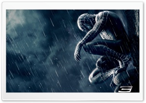 Spiderman HD Wide Wallpaper for Widescreen