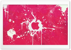 Splash Pink HD Wide Wallpaper for Widescreen