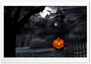 Spooky House Bats Pumpkin Full Moon Hallowmas Halloween HD Wide Wallpaper for 4K UHD Widescreen desktop & smartphone