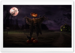 Spooky Path HD Wide Wallpaper for 4K UHD Widescreen desktop & smartphone