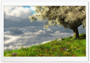 Spring 3D Scene HD Wide Wallpaper for Widescreen