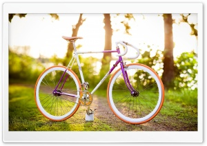 Spring Bike Ride HD Wide Wallpaper for Widescreen