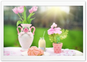 Spring Breakfast Outdoor HD Wide Wallpaper for Widescreen
