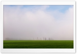 Spring Fog in the Morning HD Wide Wallpaper for Widescreen