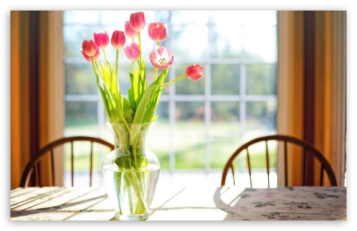 Spring Fresh Cut Tulips Flowers in Vase ❤ 4K UHD Wallpaper for Wide 16:10 5:3 Widescreen WHXGA WQXGA WUXGA WXGA WGA ; UltraWide 21:9 24:10 ; 4K UHD 16:9 Ultra High Definition 2160p 1440p 1080p 900p 720p ; UHD 16:9 2160p 1440p 1080p 900p 720p ; Standard 4:3 5:4 3:2 Fullscreen UXGA XGA SVGA QSXGA SXGA DVGA HVGA HQVGA ( Apple PowerBook G4 iPhone 4 3G 3GS iPod Touch ) ; Smartphone 16:9 3:2 5:3 2160p 1440p 1080p 900p 720p DVGA HVGA HQVGA ( Apple PowerBook G4 iPhone 4 3G 3GS iPod Touch ) WGA ; Tablet 1:1 ; iPad 1/2/Mini ; Mobile 4:3 5:3 3:2 16:9 5:4 - UXGA XGA SVGA WGA DVGA HVGA HQVGA ( Apple PowerBook G4 iPhone 4 3G 3GS iPod Touch ) 2160p 1440p 1080p 900p 720p QSXGA SXGA ; Dual 16:10 5:3 16:9 4:3 5:4 3:2 WHXGA WQXGA WUXGA WXGA WGA 2160p 1440p 1080p 900p 720p UXGA XGA SVGA QSXGA SXGA DVGA HVGA HQVGA ( Apple PowerBook G4 iPhone 4 3G 3GS iPod Touch ) ; Triple 16:10 5:3 16:9 4:3 5:4 3:2 WHXGA WQXGA WUXGA WXGA WGA 2160p 1440p 1080p 900p 720p UXGA XGA SVGA QSXGA SXGA DVGA HVGA HQVGA ( Apple PowerBook G4 iPhone 4 3G 3GS iPod Touch ) ;