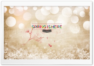 Spring Is Here HD Wide Wallpaper for Widescreen