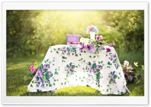 Spring Picnic HD Wide Wallpaper for Widescreen