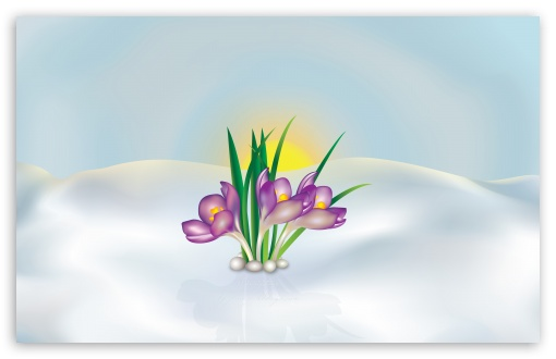 Springtime HD wallpaper for Standard 4:3 5:4 Fullscreen UXGA XGA SVGA QSXGA SXGA ; Wide 16:10 5:3 Widescreen WHXGA WQXGA WUXGA WXGA WGA ; HD 16:9 High Definition WQHD QWXGA 1080p 900p 720p QHD nHD ; Other 3:2 DVGA HVGA HQVGA devices ( Apple PowerBook G4 iPhone 4 3G 3GS iPod Touch ) ; Mobile VGA WVGA iPhone iPad PSP Phone - VGA QVGA Smartphone ( PocketPC GPS iPod Zune BlackBerry HTC Samsung LG Nokia Eten Asus ) WVGA WQVGA Smartphone ( HTC Samsung Sony Ericsson LG Vertu MIO ) HVGA Smartphone ( Apple iPhone iPod BlackBerry HTC Samsung Nokia ) Sony PSP Zune HD Zen ; Tablet 2 Android 3 DVGA HVGA HQVGA devices ( Apple PowerBook G4 iPhone 4 3G 3GS iPod Touch ) ; Dual 4:3 5:4 16:10 5:3 UXGA XGA SVGA QSXGA SXGA WHXGA WQXGA WUXGA WXGA WGA ;