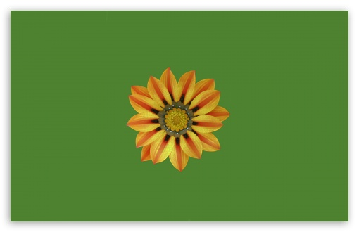SSFlower ❤ 4K UHD Wallpaper for Wide 16:10 5:3 Widescreen WHXGA WQXGA WUXGA WXGA WGA ; 4K UHD 16:9 Ultra High Definition 2160p 1440p 1080p 900p 720p ; UHD 16:9 2160p 1440p 1080p 900p 720p ; Standard 4:3 5:4 3:2 Fullscreen UXGA XGA SVGA QSXGA SXGA DVGA HVGA HQVGA ( Apple PowerBook G4 iPhone 4 3G 3GS iPod Touch ) ; Smartphone 5:3 WGA ; Tablet 1:1 ; iPad 1/2/Mini ; Mobile 4:3 5:3 3:2 16:9 5:4 - UXGA XGA SVGA WGA DVGA HVGA HQVGA ( Apple PowerBook G4 iPhone 4 3G 3GS iPod Touch ) 2160p 1440p 1080p 900p 720p QSXGA SXGA ;