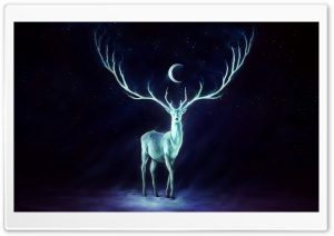 Stag Painting HD Wide Wallpaper for Widescreen