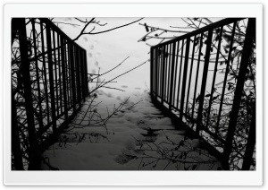 Stairs Winter HD Wide Wallpaper for Widescreen