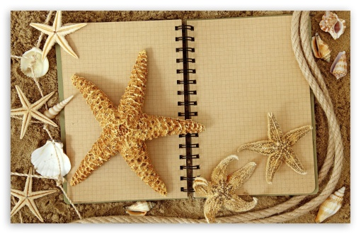 Starfish ❤ 4K UHD Wallpaper for Wide 16:10 5:3 Widescreen WHXGA WQXGA WUXGA WXGA WGA ; 4K UHD 16:9 Ultra High Definition 2160p 1440p 1080p 900p 720p ; Standard 4:3 3:2 Fullscreen UXGA XGA SVGA DVGA HVGA HQVGA ( Apple PowerBook G4 iPhone 4 3G 3GS iPod Touch ) ; iPad 1/2/Mini ; Mobile 4:3 5:3 3:2 16:9 - UXGA XGA SVGA WGA DVGA HVGA HQVGA ( Apple PowerBook G4 iPhone 4 3G 3GS iPod Touch ) 2160p 1440p 1080p 900p 720p ;