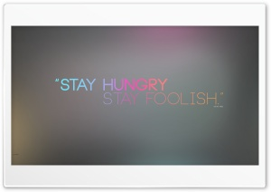 Stay Foolish HD Wide Wallpaper for 4K UHD Widescreen desktop & smartphone