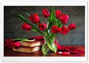 Still life HD Wide Wallpaper for Widescreen