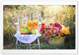 Still Life Pears Fruits Bowl, Wooden Chair, Flowers HD Wide Wallpaper for 4K UHD Widescreen desktop & smartphone