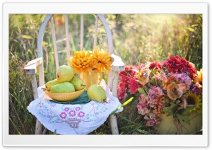 Still Life Rustic Scene with Flowers, Pears Fruits, Outdoor HD Wide Wallpaper for 4K UHD Widescreen desktop & smartphone