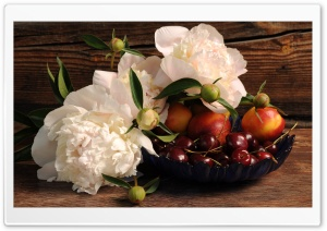 Still Life with Fruits and Flowers HD Wide Wallpaper for Widescreen