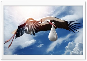 Stork Carrying Baby Ultra HD Wallpaper for 4K UHD Widescreen desktop, tablet & smartphone