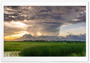 Storm Clouds Gathering HD Wide Wallpaper for Widescreen