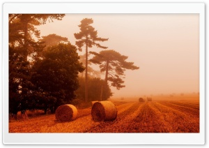 Straw Rolls, Orange Fog HD Wide Wallpaper for Widescreen
