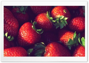 Strawberries HD Wide Wallpaper for 4K UHD Widescreen desktop & smartphone