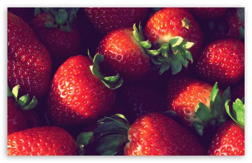 Strawberries HD wallpaper for Standard 4:3 5:4 Fullscreen UXGA XGA SVGA QSXGA SXGA ; Wide 16:10 5:3 Widescreen WHXGA WQXGA WUXGA WXGA WGA ; HD 16:9 High Definition WQHD QWXGA 1080p 900p 720p QHD nHD ; Other 3:2 DVGA HVGA HQVGA devices ( Apple PowerBook G4 iPhone 4 3G 3GS iPod Touch ) ; Mobile VGA WVGA iPhone iPad PSP Phone - VGA QVGA Smartphone ( PocketPC GPS iPod Zune BlackBerry HTC Samsung LG Nokia Eten Asus ) WVGA WQVGA Smartphone ( HTC Samsung Sony Ericsson LG Vertu MIO ) HVGA Smartphone ( Apple iPhone iPod BlackBerry HTC Samsung Nokia ) Sony PSP Zune HD Zen ; Tablet 2 ;