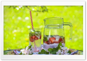Strawberry Lemonade Pitcher HD Wide Wallpaper for Widescreen