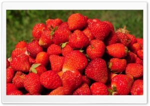 Strawberry Pyramid HD Wide Wallpaper for Widescreen