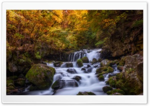 Stream Waterfall HD Wide Wallpaper for Widescreen