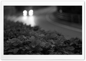 Street at night Black and White HD Wide Wallpaper for Widescreen