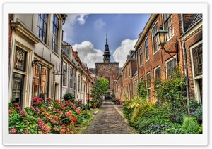 Street In Holland HD Wide Wallpaper for 4K UHD Widescreen desktop & smartphone