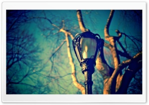 Street Lamp Ultra HD Wallpaper for 4K UHD Widescreen desktop, tablet & smartphone
