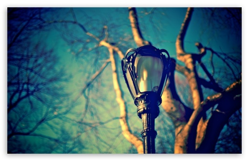 Download Street Lamp UltraHD Wallpaper