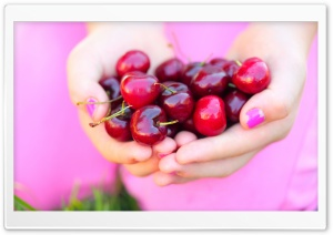 Summer Cherries HD Wide Wallpaper for 4K UHD Widescreen desktop & smartphone