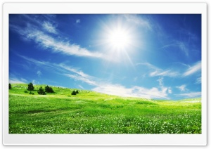 Summer Day HD Wide Wallpaper for Widescreen